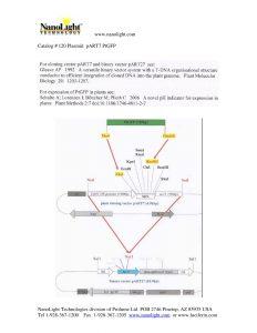 120 Plasmid_pART7_PtGFP info PDF