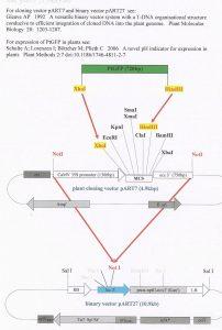 121 pART27 info PDF